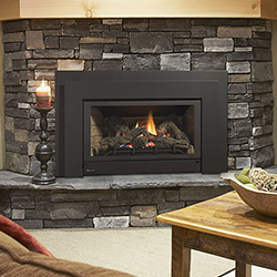 Regency Horizon™ HZI234E Small Gas Insert